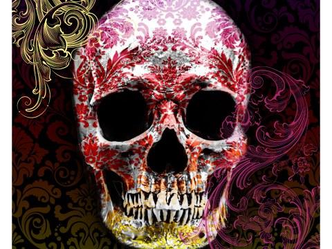 Cranio in colore